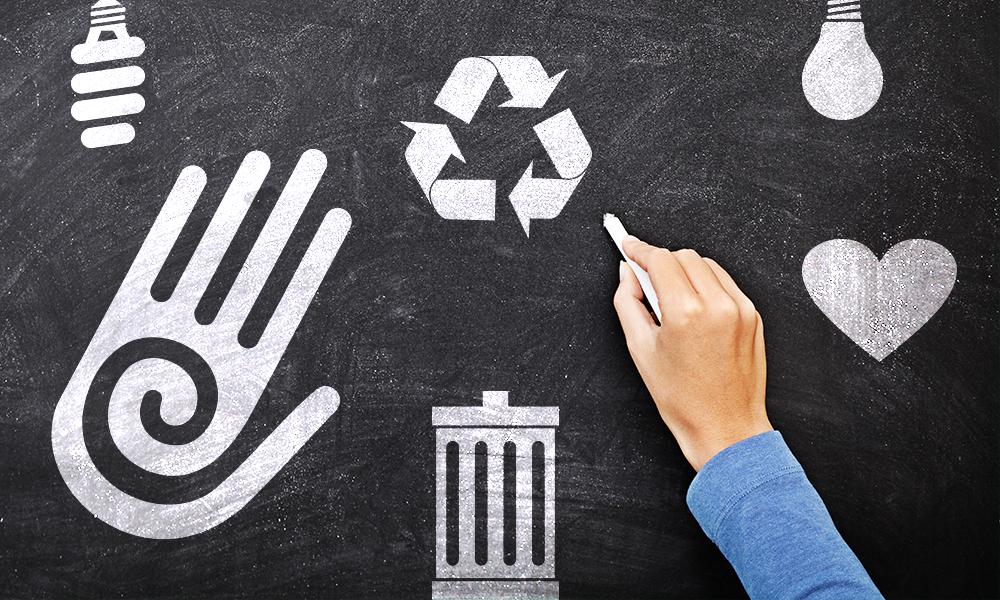 4 práticas de sustentabilidade que você pode adotar na sua MPE